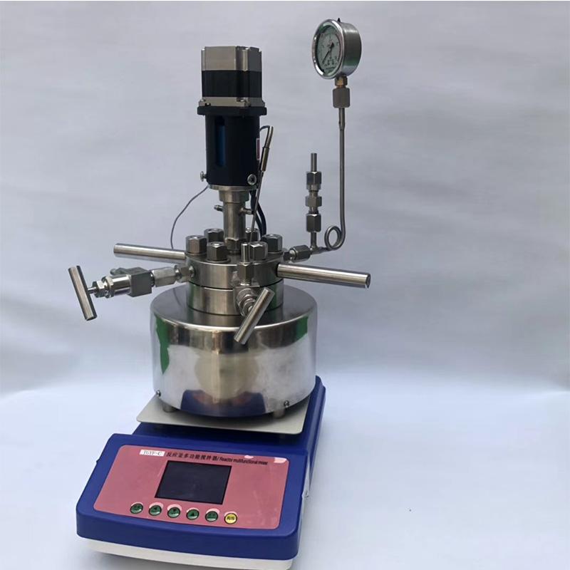 实验室搅拌水热合成反应釜
